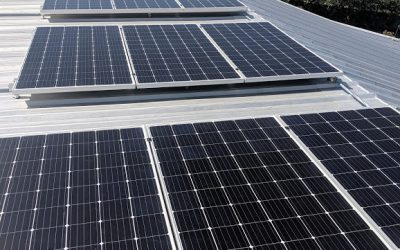 A Guide to Rooftop Solar Panels and Ground Mount Systems